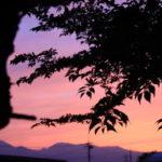明野西望。夕焼けです