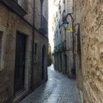 フランスはカルカソンヌからスペインのジローナへのドライブの旅